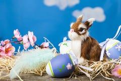 Ζωή Πάσχας ακόμα με τα αυγά Πάσχας και ένα κουνέλι παιχνιδιών Στοκ Φωτογραφία