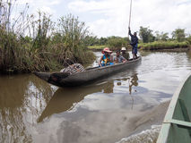 Ζωή στον ποταμό του δέλτα Antainambalana, Antsiranana, Μαδαγασκάρη Στοκ Φωτογραφία
