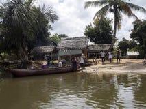 Ζωή στον ποταμό του δέλτα Antainambalana, Antsiranana, Μαδαγασκάρη Στοκ φωτογραφίες με δικαίωμα ελεύθερης χρήσης