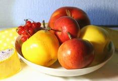 ζωή φθινοπώρου ακόμα Κόκκινο viburnum, μήλα κίτρινα και κόκκινα των διαφορετικών ποικιλιών σε ένα άσπρο πιάτο σε ένα μπλε κλίμα τ Στοκ Φωτογραφία