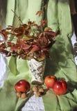 Ζωή φθινοπώρου ακόμα με τα φύλλα των σταφυλιών στοκ φωτογραφίες
