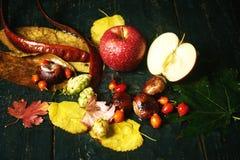 Ζωή φθινοπώρου ακόμα με τη Apple σε ένα σκοτεινό υπόβαθρο Στοκ Φωτογραφία