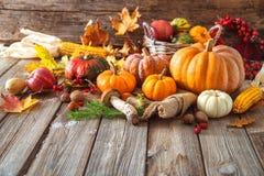 Ζωή φθινοπώρου ακόμα με τις κολοκύθες, corncobs, τα φρούτα και τα φύλλα Στοκ Εικόνα
