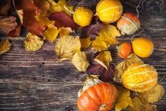 Ζωή φθινοπώρου ακόμα με τις κολοκύθες και τα φύλλα στο παλαιό ξύλινο backgro Στοκ Εικόνα