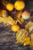 Ζωή φθινοπώρου ακόμα με τις κολοκύθες και τα φύλλα στο παλαιό ξύλινο backgro Στοκ εικόνα με δικαίωμα ελεύθερης χρήσης