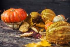 Ζωή φθινοπώρου ακόμα με τις κολοκύθες και τα φύλλα στο παλαιό ξύλινο backgro Στοκ Εικόνες