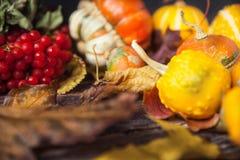 Ζωή φθινοπώρου ακόμα με τις κολοκύθες και τα φύλλα στο παλαιό ξύλινο backgro Στοκ φωτογραφίες με δικαίωμα ελεύθερης χρήσης