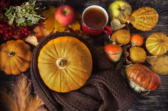 Ζωή φθινοπώρου ακόμα με τις κολοκύθες και το φλυτζάνι του τσαγιού στην παλαιά ξύλινη ΤΣΕ Στοκ φωτογραφίες με δικαίωμα ελεύθερης χρήσης