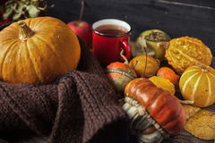 Ζωή φθινοπώρου ακόμα με τις κολοκύθες και το φλυτζάνι του τσαγιού στην παλαιά ξύλινη ΤΣΕ Στοκ Φωτογραφίες