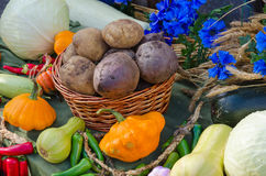 ζωή φθινοπώρου ακόμα Συγκομιδή της ποικιλίας των λαχανικών Στοκ Εικόνες