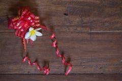 Ζωή χάλυβα plumeria δώρων Στοκ φωτογραφία με δικαίωμα ελεύθερης χρήσης