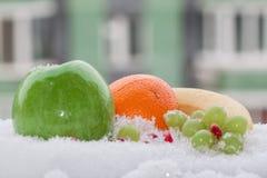 ζωή 012 χειμώνα ακόμα Στοκ φωτογραφίες με δικαίωμα ελεύθερης χρήσης
