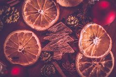 Ζωή Χριστουγέννων ακόμα με τα φρούτα και τα καρυκεύματα Στοκ Εικόνες