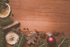 Ζωή Χριστουγέννων ακόμα με τα φρούτα και τα καρυκεύματα Στοκ εικόνες με δικαίωμα ελεύθερης χρήσης
