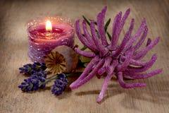 Ζωή SPA ακόμα με lavender και το anemone Στοκ φωτογραφίες με δικαίωμα ελεύθερης χρήσης