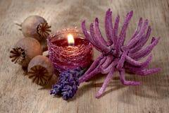 Ζωή SPA ακόμα με lavender και το anemone Στοκ Φωτογραφία