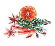 Ζωή Watercolor ακόμα του ξηρών πορτοκαλιού, του έλατου, της κανέλας, του γλυκάνισου και των γαρίφαλων Στοκ Φωτογραφία
