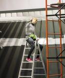 Ζωγράφος στο stepladder Στοκ φωτογραφίες με δικαίωμα ελεύθερης χρήσης