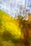 Ζωγραφική δέντρων Στοκ φωτογραφία με δικαίωμα ελεύθερης χρήσης
