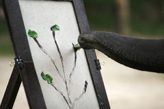 ζωγραφική ελεφάντων Στοκ Εικόνες