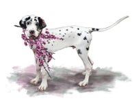 Ζωγραφική ενός καλού μεγάλου σκυλιού Δανών που κρατά τους flowery κλάδους κερασιών Στοκ Εικόνα