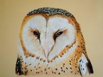 ζωγραφική κουκουβαγιώ& Στοκ εικόνα με δικαίωμα ελεύθερης χρήσης