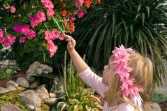 ζωγραφική λουλουδιών στοκ εικόνες με δικαίωμα ελεύθερης χρήσης
