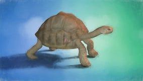 Ζωγραφική μιας χελώνας ελεύθερη απεικόνιση δικαιώματος
