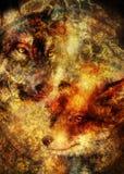 Ζωγραφική της άγριων αλεπούς και του λύκου Διακοσμητικό υπόβαθρο στοκ εικόνα με δικαίωμα ελεύθερης χρήσης