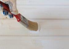 Ζωγραφική της ξύλινης επένδυσης του πεύκου Στοκ Εικόνες