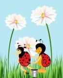 Ζωγραφική των σημείων στο ladybug διανυσματική απεικόνιση