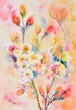 Ζωγραφική Watercolor, λουλούδια στοκ εικόνες