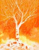Ζωγραφική Watercolor με το δέντρο και τη βροχή σημύδων φθινοπώρου Στοκ Εικόνες
