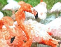 Ζωγραφική Watercolor με το φλαμίγκο διανυσματική απεικόνιση