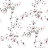 Ζωγραφική Watercolor του φύλλου και των λουλουδιών, άνευ ραφής σχέδιο στο λευκό ελεύθερη απεικόνιση δικαιώματος