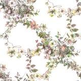 Ζωγραφική Watercolor του φύλλου και των λουλουδιών, άνευ ραφής σχέδιο στο λευκό Στοκ Φωτογραφίες