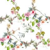 Ζωγραφική Watercolor του φύλλου και των λουλουδιών, άνευ ραφής σχέδιο Στοκ φωτογραφίες με δικαίωμα ελεύθερης χρήσης