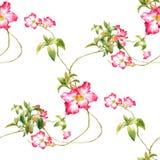 Ζωγραφική Watercolor του φύλλου και των λουλουδιών, άνευ ραφής σχέδιο στο άσπρο υπόβαθρο ελεύθερη απεικόνιση δικαιώματος