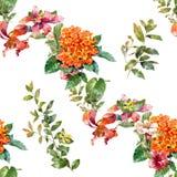 Ζωγραφική Watercolor του φύλλου και των λουλουδιών, άνευ ραφής σχέδιο, στο άσπρο υπόβαθρο απεικόνιση αποθεμάτων