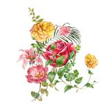 Ζωγραφική Watercolor των φύλλων και του λουλουδιού, στο λευκό Στοκ εικόνες με δικαίωμα ελεύθερης χρήσης