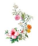 Ζωγραφική Watercolor των φύλλων και του λουλουδιού απεικόνιση αποθεμάτων