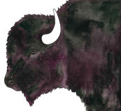 Ζωγραφική watercolor Buffalo του Bull Στοκ Εικόνες