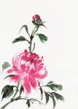 Ζωγραφική watercolor Peonies Στοκ Φωτογραφίες