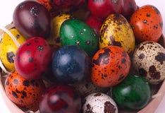 Ζωγραφισμένο στο χέρι χρωματισμένο κρητιδογραφία υπόβαθρο αυγών ορτυκιών Πάσχας Στοκ εικόνα με δικαίωμα ελεύθερης χρήσης