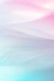 Ζωηρά πέταλα λουλουδιών χρώματος στο μαλακό ύφος χρώματος και θαμπάδων Στοκ εικόνα με δικαίωμα ελεύθερης χρήσης