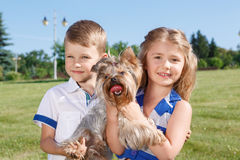 Ζωηρά παιδιά που έχουν τη διασκέδαση με το σκυλί Στοκ Φωτογραφία