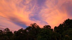 Ζωηρά σύννεφα και δέντρα ηλιοβασιλέματος Στοκ φωτογραφία με δικαίωμα ελεύθερης χρήσης