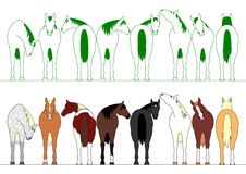 Ζωηρόχρωμα άλογα σε μια σειρά ελεύθερη απεικόνιση δικαιώματος