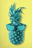Ζωηρόχρωμα αναδρομικά φρούτα ανανά που φορούν τα γυαλιά ηλίου στοκ εικόνες