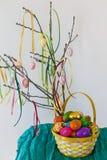 ζωηρόχρωμα αυγά Πάσχας κλάδων ανασκόπησης που κρεμούν το απομονωμένο λευκό Στοκ Φωτογραφίες
